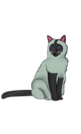 siamese-cat-770369__340.png