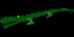 alligator-157146__340