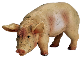pig-2730582__340.png