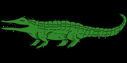 alligator-2024456__340