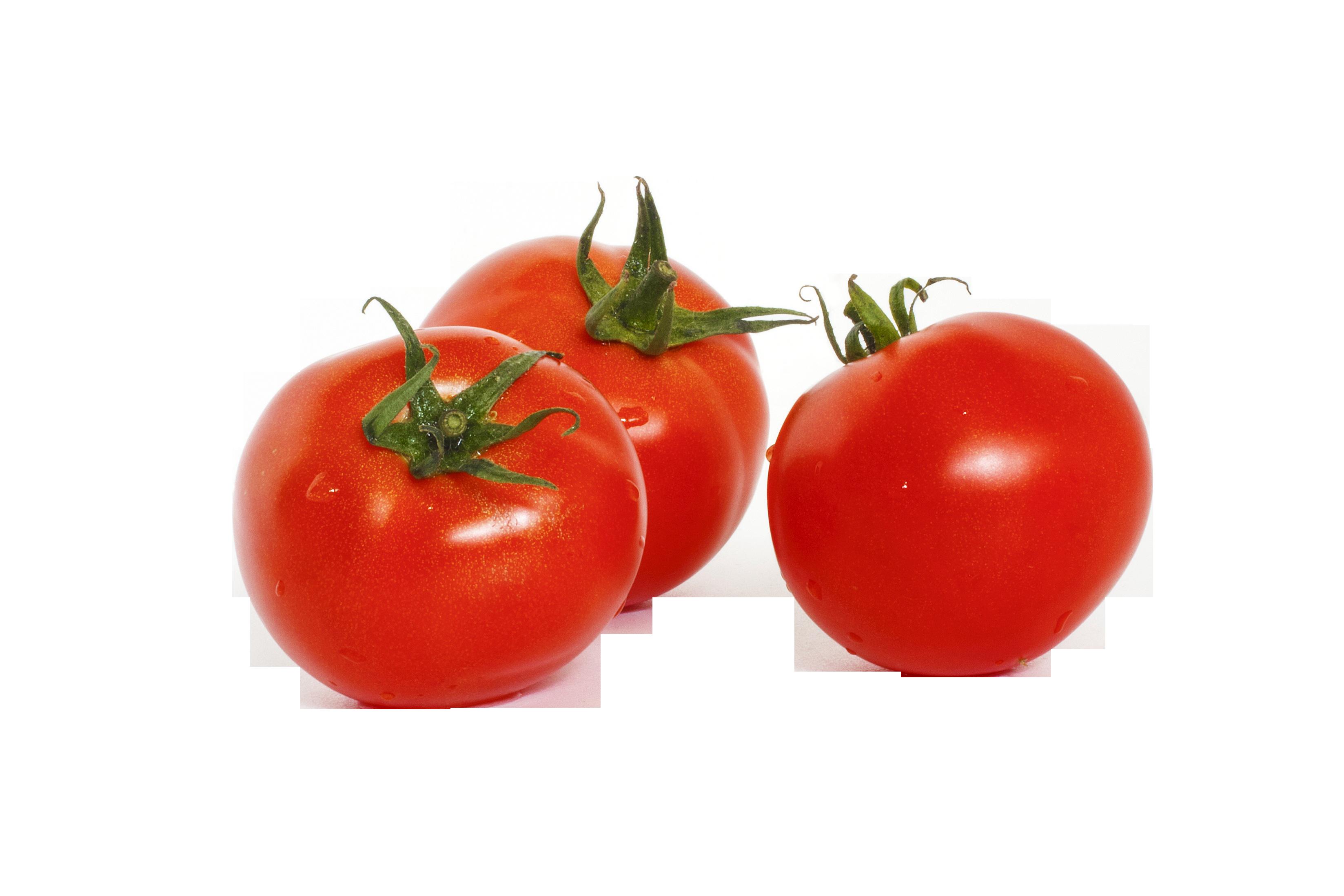 tomato-877019_Clip