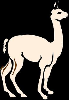 alpaca-2024324__340