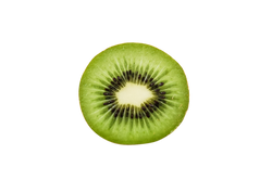 kiwi-428080_Clip