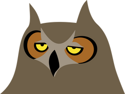 Owl_Bored