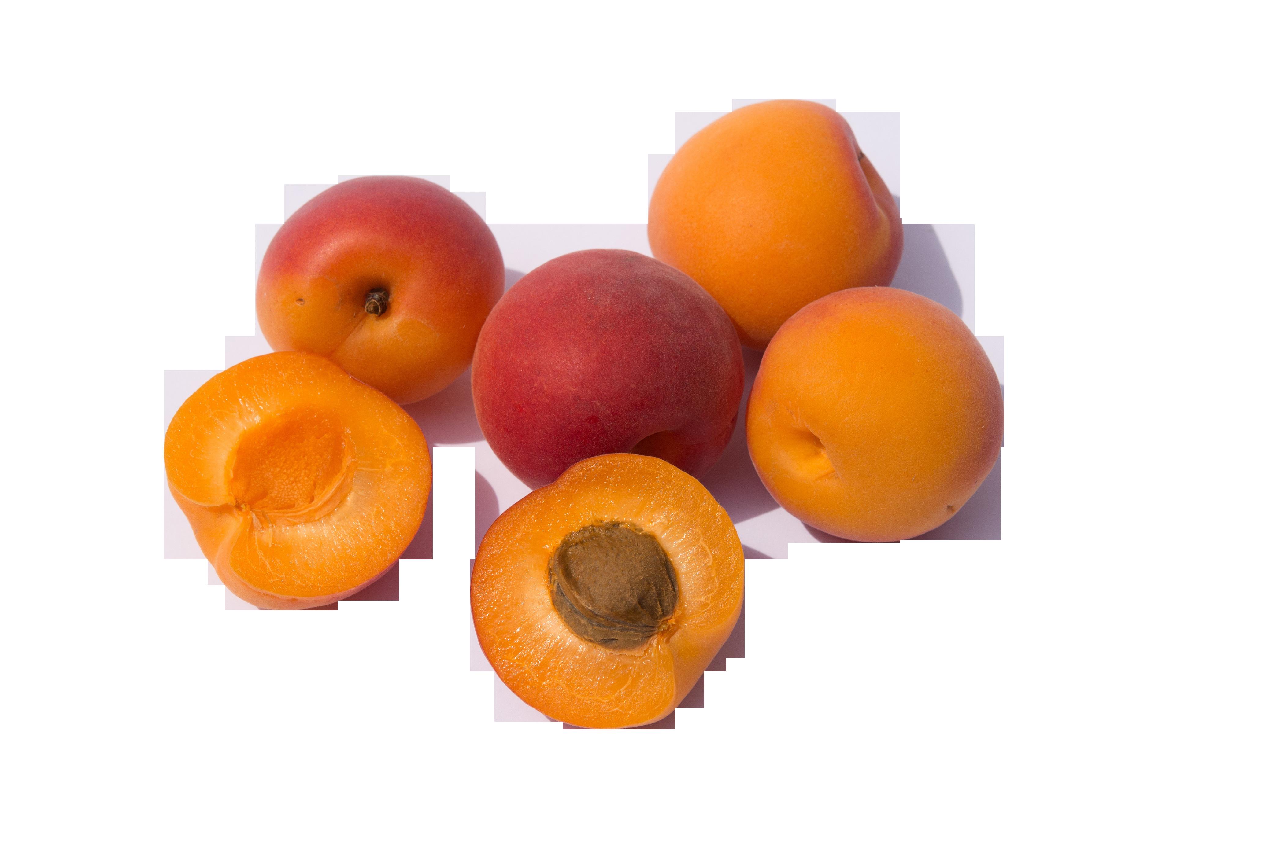 fruits-374749_Clip