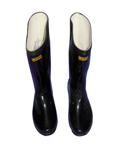 Wellington boots (58).png