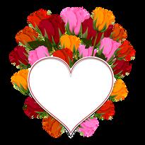 rose-2452411__340.png