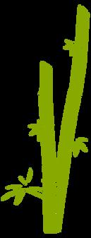 Bamboo (9).png