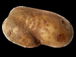 potato-1166407_Clip