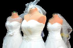 wedding-dress-1236010_Clip