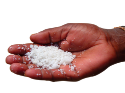 salt-51973_Clip