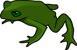 TheresaKnott_frog