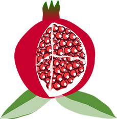 pomegranate-150255__340.png