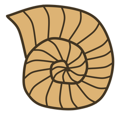 Snail_Shell