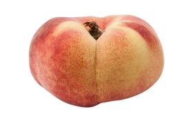 vineyard-peach-346327_Clip