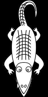 alligator-150186__340