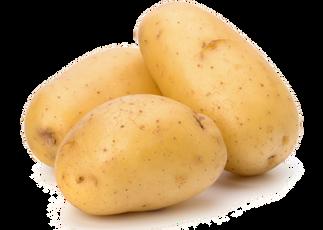 Potato, free PNGs