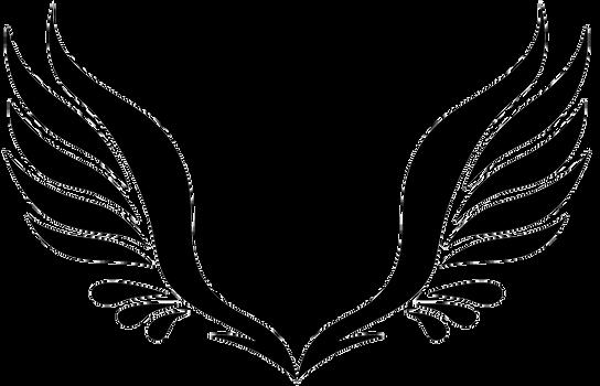 Wings-png-47