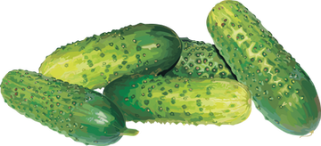 Cucumber, free PNGs