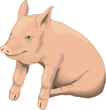 Free png pig images.