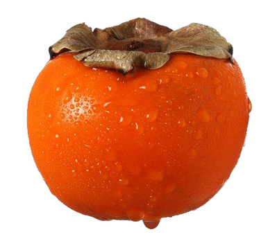 Persimmon PNG