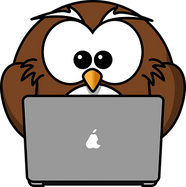 owl-158414__340.png