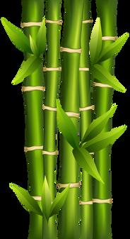 Bamboo (12).png