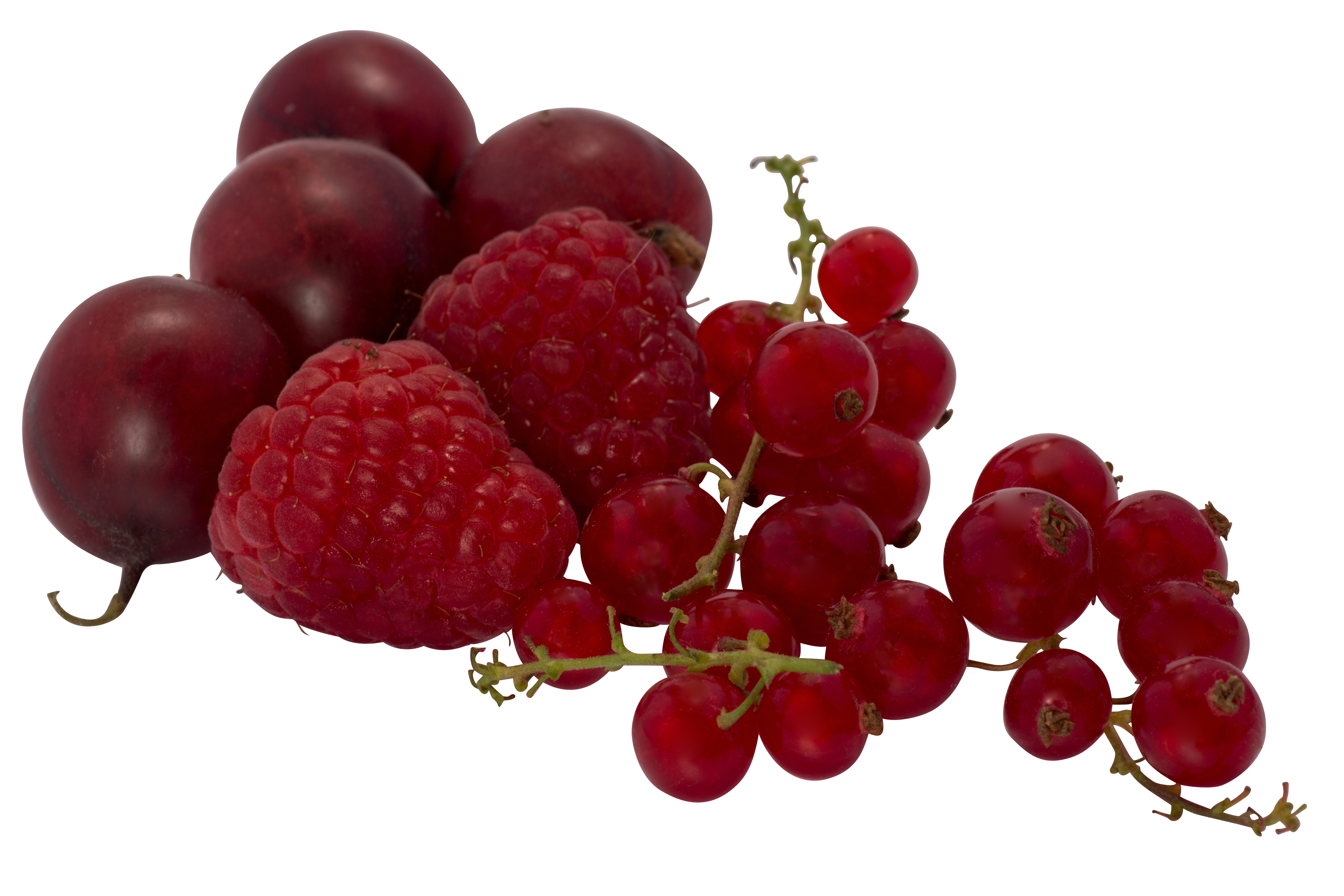 berries-838216_Clip