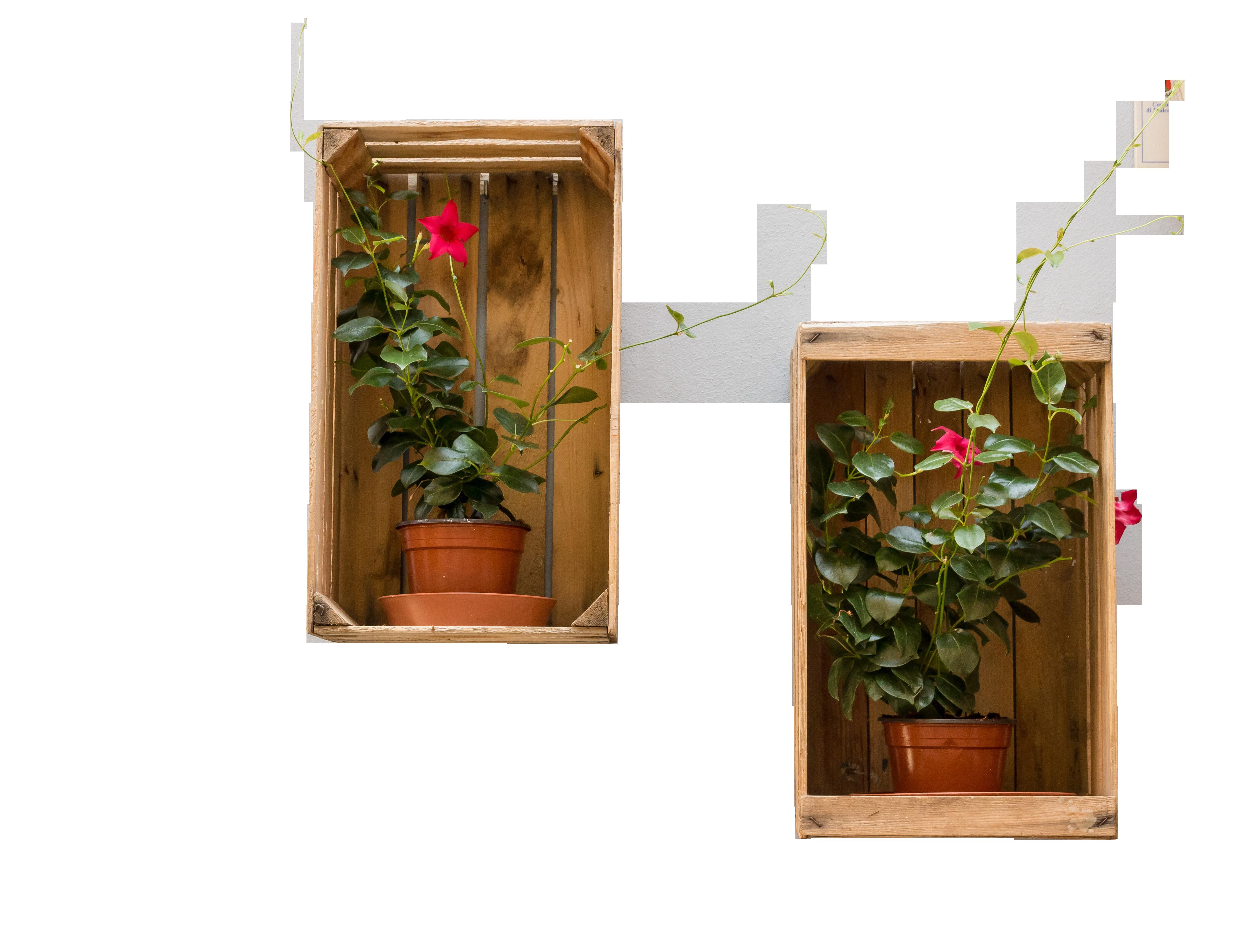 flowerpot-935972_Clip
