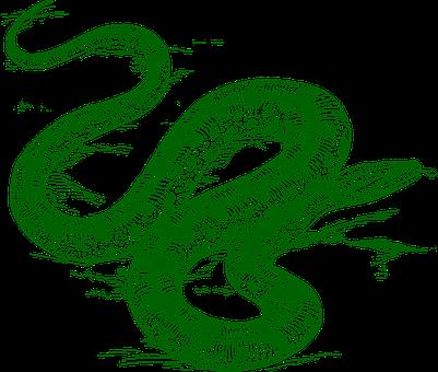 anaconda-297541__340