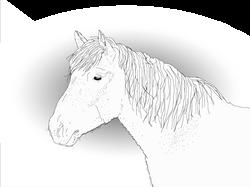 20140519_toivottu-poika-outlines_ore-e-ref_c_q_xxx_e-1-a_hevoslinja-trans-horse_img.psd