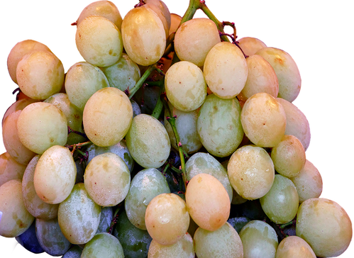 a-table-grape-2666030_960_720.png