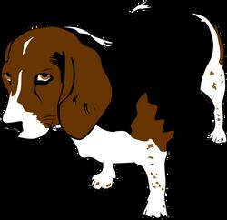 Gerald_G_Copper_the_Beagle