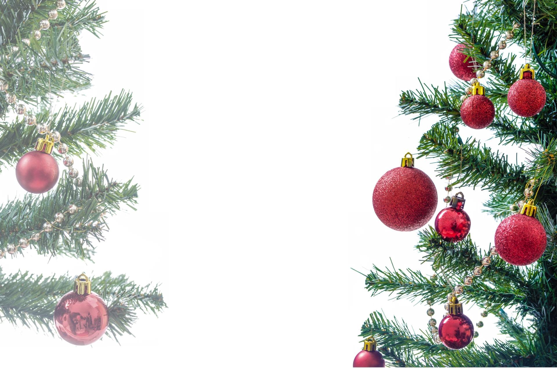tree-314550_Clip