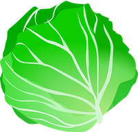 cabbage-159333__340.png