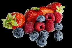 berries-1225101_Clip