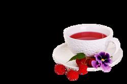 mug-219844_Clip