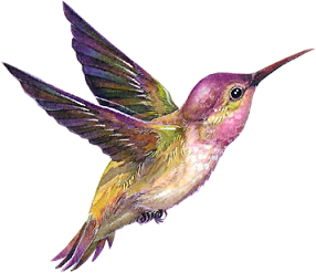 Complete animal free PNG collection, Free PNGs has tens of thousands of free transparent cutout PNG  images to download today.   - Top transparent PNG images. - Biggest PNG collection on the net.  - Unlimited downloads. - Check out our bird collection today.