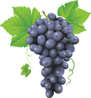 Grape PNG