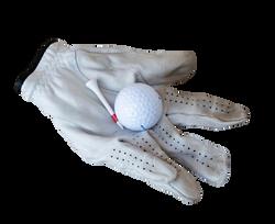 golf-881319_Clip