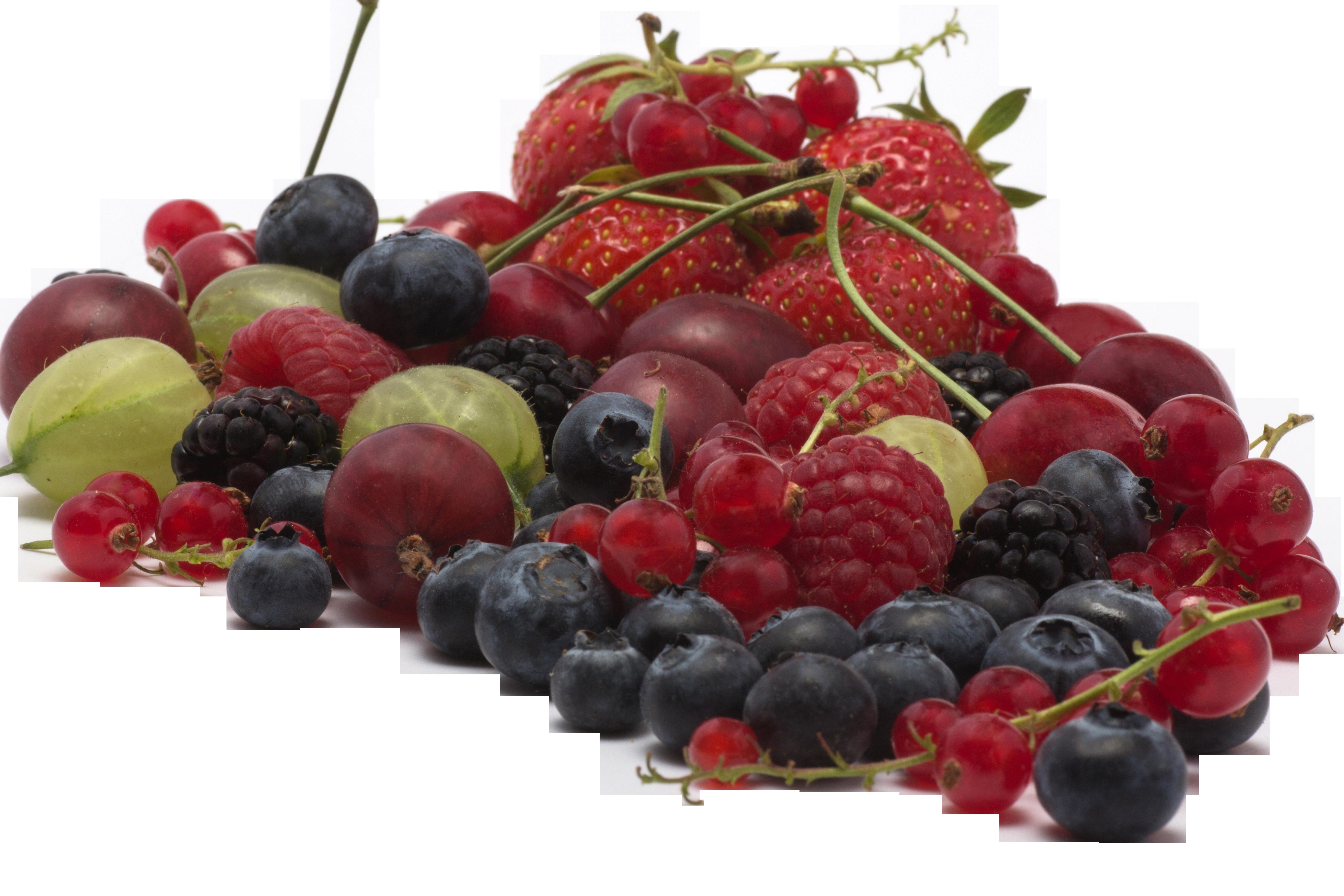fruit-836754_Clip