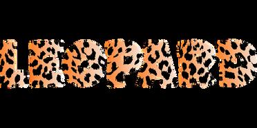 leopard-1237253__340.png
