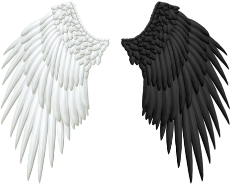 Wing-png-08