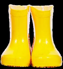 Wellington boots (17).png