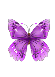 Butterfly free PNGs