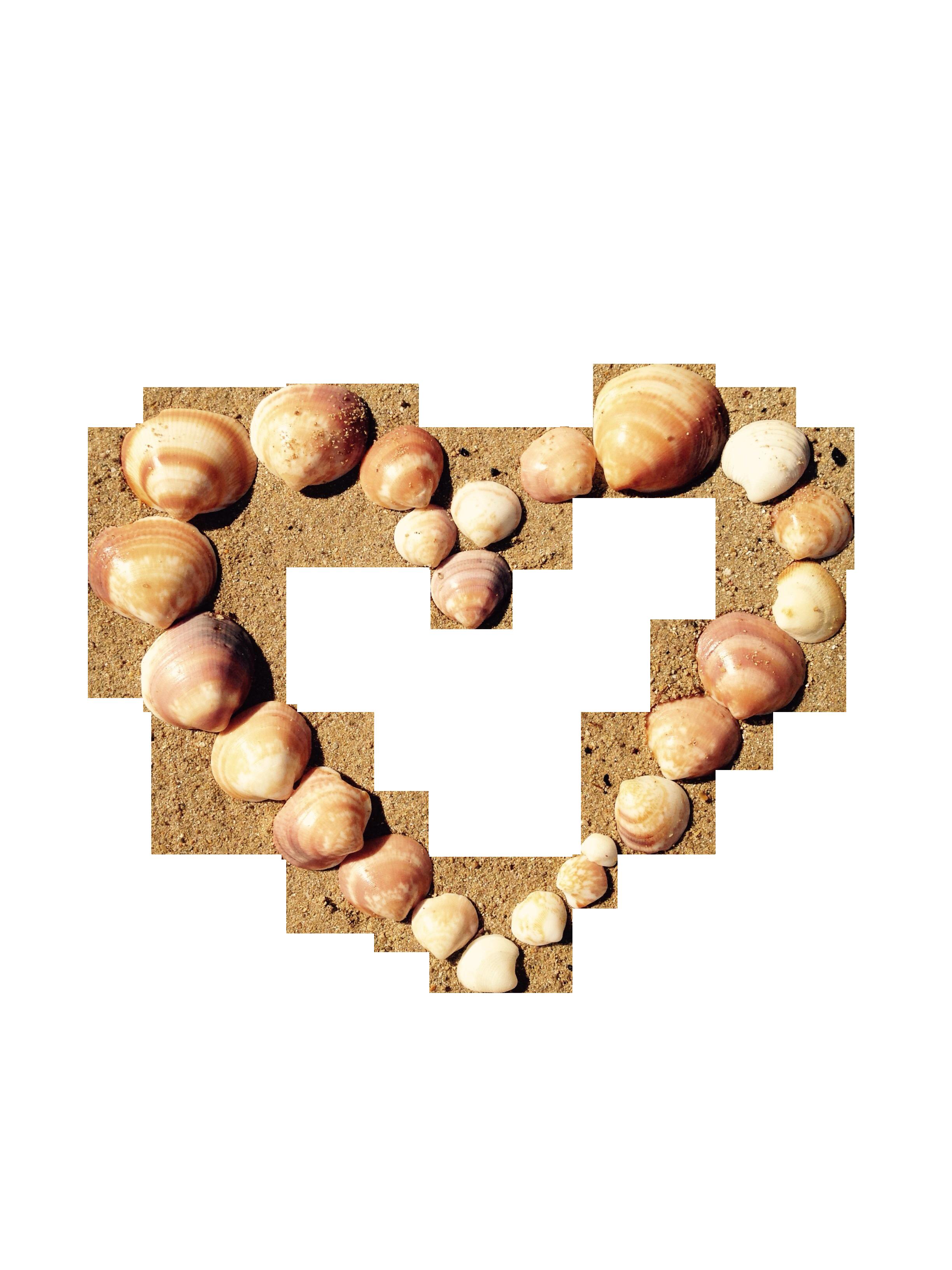 heart-815168_Clip