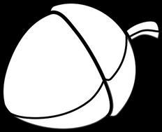 acorn-308372__340.png