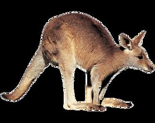 Australia, PNG images