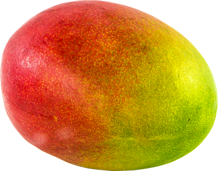 mango-1218147_960_720.png