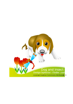 Dog_and_insert